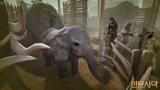Elephants and Camels Guide | BDFoundry